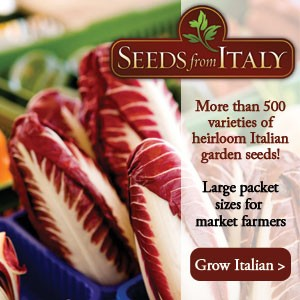 Seeds From Italy
