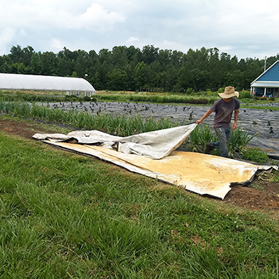 Efficient, low-stress techniques for handling silage tarps
